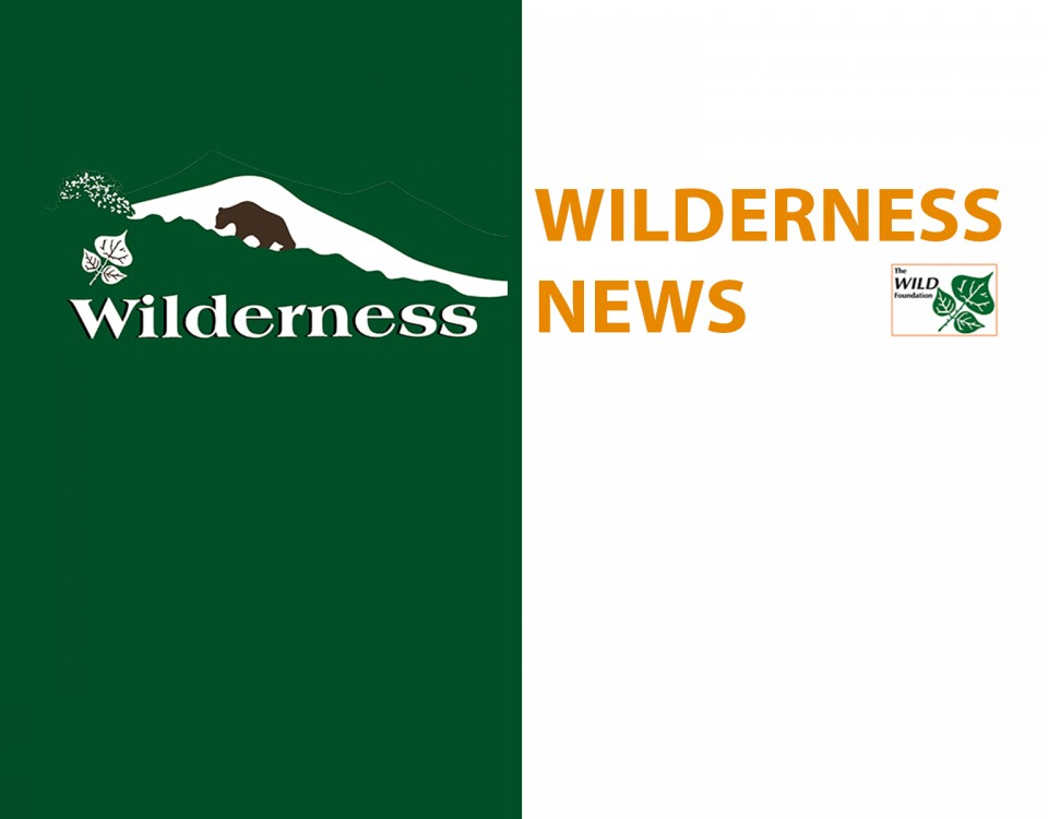 WILDERNESS IT - NEWS - Lungo 1920