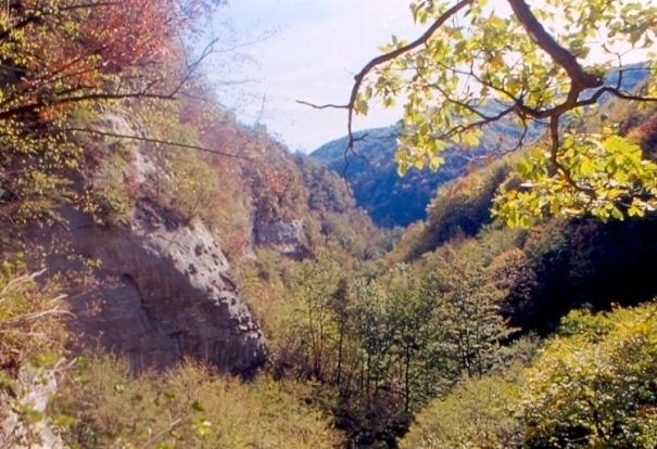 Wilderness IT - AREA WILDERNESS BURRONE DI LODISIO - Foto 05