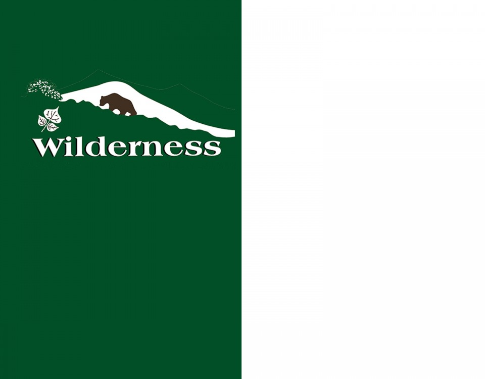 Wilderness IT - Immagine Evidenza Generica per Notizie