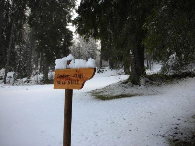 Wilderness IT - AREA WILDERNESS Pian de le stele - Foto 02