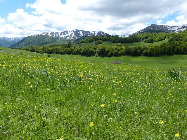 Wilderness IT - Area Wilderness Monte Turchio - Foto 01