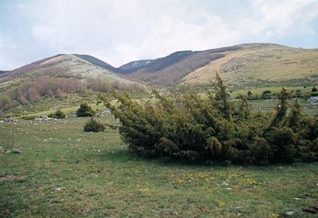 Wilderness IT - Area Wilderness Monti Nuria e Nurietta - Foto 01