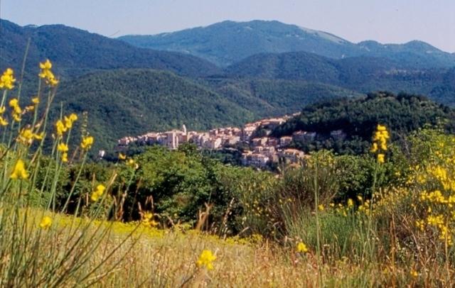 Wilderness IT - Area Wilderness Wilderness IT - Gola del Fiume Rapido - Foto 01