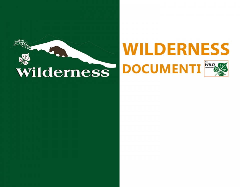 Wilderness IT - Documenti