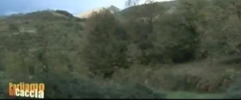 Wilderness IT - I NOSTRI VIDEO - Area Wilderness Foss Cucuruzzo