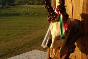 2012 08 28 - Wilderness IT - SUL CAPRIOLO DI SARA CHIARLONE - 001