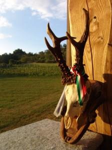 2012 08 28 - Wilderness IT - SUL CAPRIOLO DI SARA CHIARLONE - 002